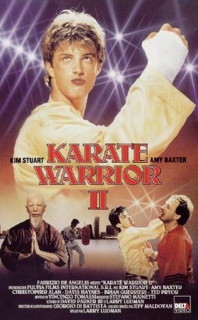 karatewarrior2