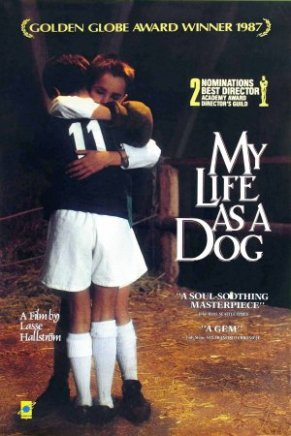 mylifeasadog