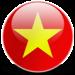vietnam-icon