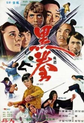 whentaekwondostrikes