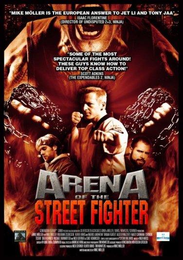 arenaofthestreetfighter