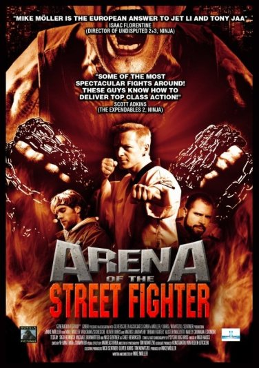 arenaofthestreetfighter