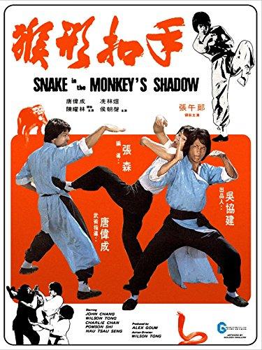 snakeinthemonkeysshadow